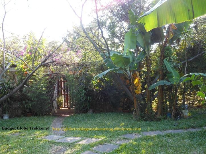 Casa Rosario garden